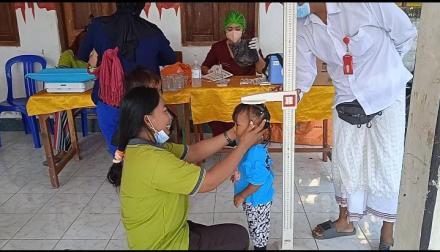 Kegiatan Posyandu di Banjar Dinas Pabean Sangsit,  Desa Sangsit.