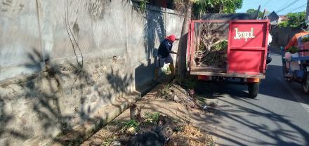 Pembersihan Got/ Drainase oleh Tim GERBANGSIH Desa Sangsit
